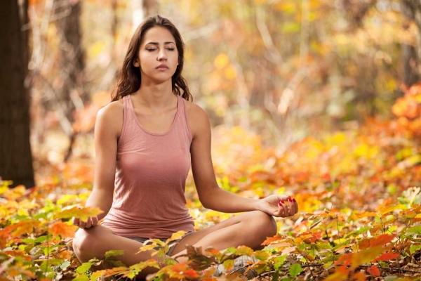atelier de yoga, de méditation et de relaxation en pleine nature en lien avec les énergies de l'automne.