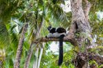 Ile Sainte Marie de Madagascar
