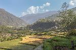 Promenade dans les rizières népalaises
